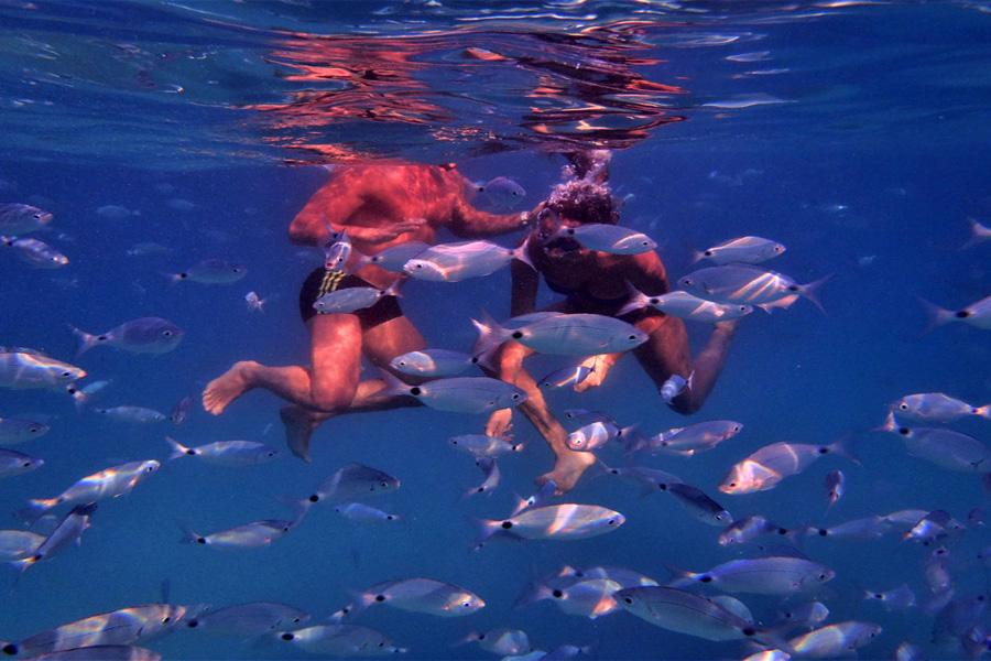 bagno-con-pesci