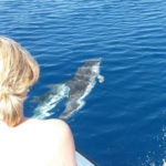Escursioni in barca Tropea Capo Vaticano